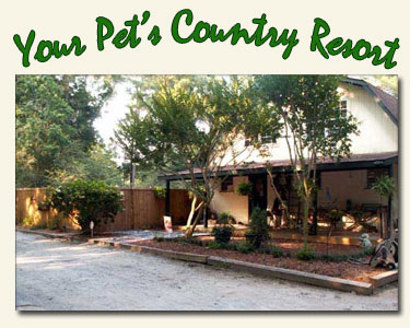 Creekside Pet Retreat